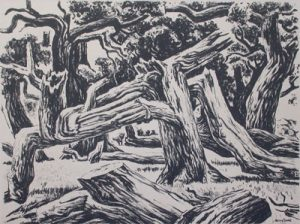 MILFORD ZORNES Cottonwoods