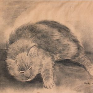 FRODE NELLSON DANN Fluffy Cat