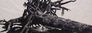 LYND WARD Tree of Life