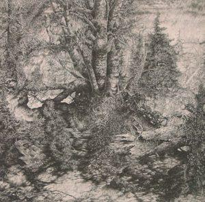 MARK LEITHAUSER Birches