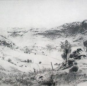 PETER W. MILTON Panorama I