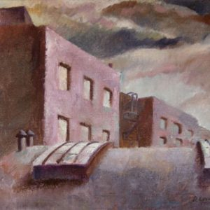 DAVID P. LEVINE Skylights and Rooftops